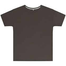 Textiel Kinderen T-shirts korte mouwen Sg SGTEEK Houtskool
