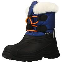 Schoenen Jongens Snowboots Kickers 653265 Blauw