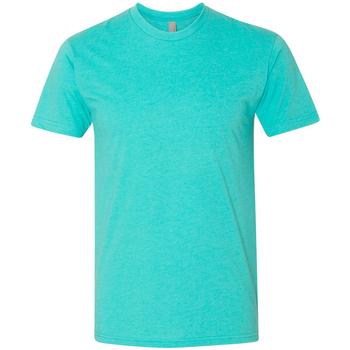 Textiel Heren T-shirts korte mouwen Next Level NX6210 Tahiti Blauw