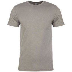 Textiel Heren T-shirts korte mouwen Next Level NX6210 Steengrijs