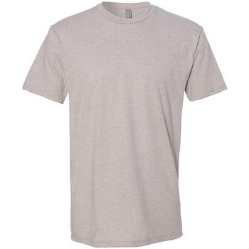 Textiel Heren T-shirts korte mouwen Next Level NX6210 Zijde