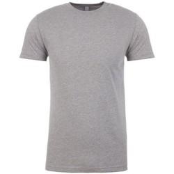 Textiel Heren T-shirts korte mouwen Next Level NX6210 Donkere Heide Grijs