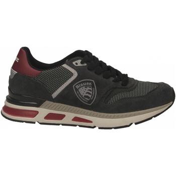 Schoenen Heren Lage sneakers Blauer HILO01 dark-grey