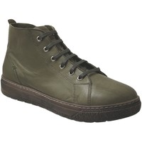 Schoenen Dames Laarzen Andrea Conti 406002 Kaki leer