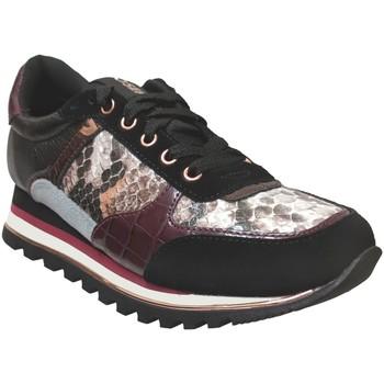 Schoenen Dames Lage sneakers Gioseppo Oryol Zwart / bordeaux