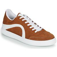 Schoenen Heren Lage sneakers André POLO Bruin