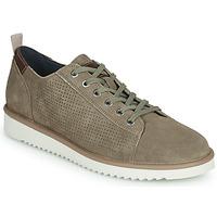 Schoenen Heren Lage sneakers Geox U DAYAN Bruin
