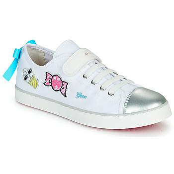 Schoenen Meisjes Lage sneakers Geox JR CIAK FILLE Wit / Zilver