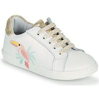 Schoenen Meisjes Lage sneakers GBB EDONIA Wit