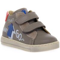Schoenen Meisjes Lage sneakers Naturino FALCOTTO 1B76 HOGWA AZZURRO Blu