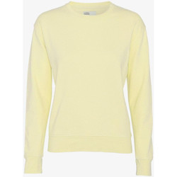 Textiel Dames Truien Colorful Standard CLASSIC ORGANIC CREW soft-yellow