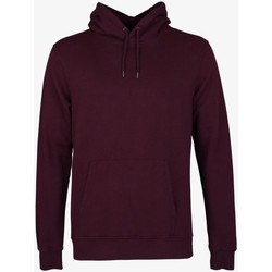 Textiel Heren Sweaters / Sweatshirts Colorful Standard CLASSIC ORGANIC HOOD oxblood-red-rosso