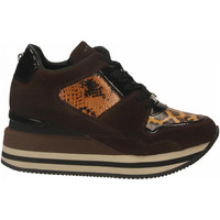 Schoenen Dames Lage sneakers Apepazza HILARY brown