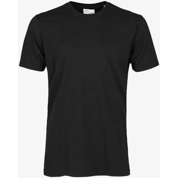 Textiel Heren T-shirts korte mouwen Colorful Standard CLASSIC ORGANIC TEE deep-black-nero