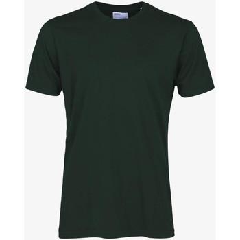 Textiel Heren T-shirts korte mouwen Colorful Standard CLASSIC ORGANIC TEE hunter-green-verde
