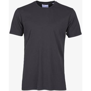 Textiel Heren T-shirts korte mouwen Colorful Standard CLASSIC ORGANIC TEE lava-grey-grigio