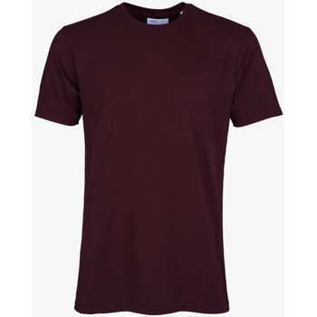 Textiel Heren T-shirts korte mouwen Colorful Standard CLASSIC ORGANIC TEE oxblood-red-rosso