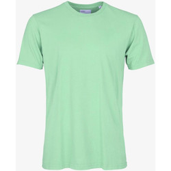 Textiel Heren T-shirts korte mouwen Colorful Standard CLASSIC ORGANIC TEE faded-mint