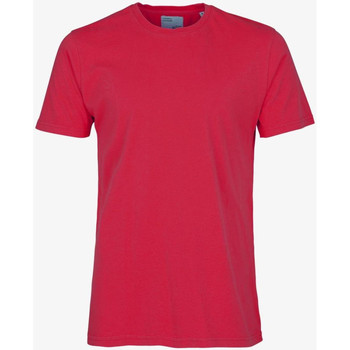 Textiel Heren T-shirts korte mouwen Colorful Standard CLASSIC ORGANIC TEE scarlet-red