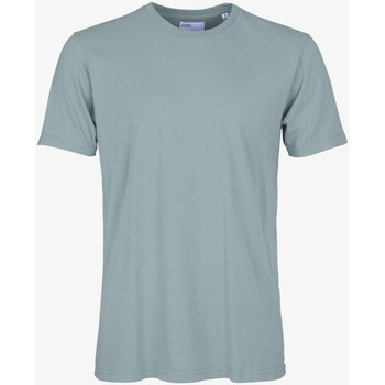 Textiel Heren T-shirts korte mouwen Colorful Standard CLASSIC ORGANIC TEE steel-blue