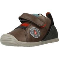 Schoenen Jongens Lage sneakers Biomecanics 201123 Bruin