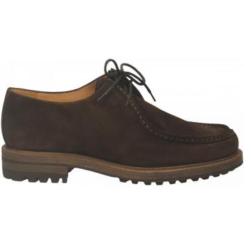 Schoenen Heren Derby Antica Cuoieria CORTINA nutella