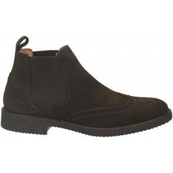 Schoenen Heren Laarzen Antica Cuoieria VELOUR testa-di-moro