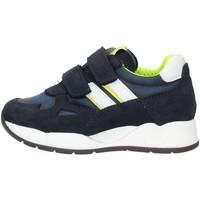 Schoenen Jongens Lage sneakers Nero Giardini I023910M Blue