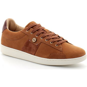 Schoenen Heren Sneakers Faguo Hosta Marron