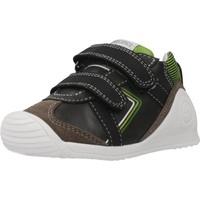 Schoenen Jongens Lage sneakers Biomecanics 201126 Bruin
