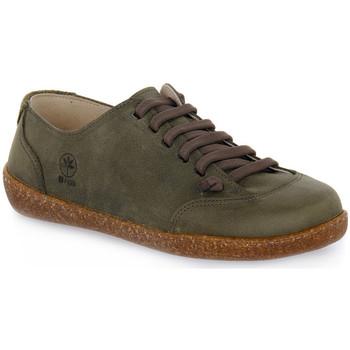 Schoenen Heren Lage sneakers Bioline FUMO EGEO INGRASSATO Marrone