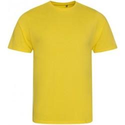 Textiel Heren T-shirts korte mouwen Ecologie EA001 Zonnegeel