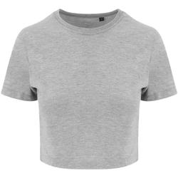 Textiel Dames T-shirts korte mouwen Awdis JT006 Heide Grijs