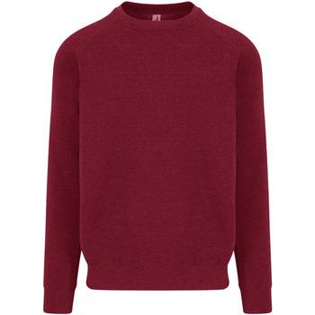 Textiel Heren Sweaters / Sweatshirts Awdis JH130 Bourgondië