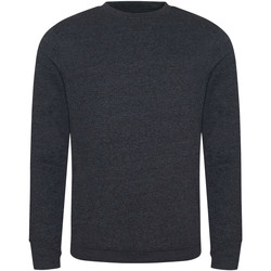 Textiel Heren Sweaters / Sweatshirts Ecologie EA030 Houtskool