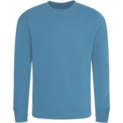 Textiel Heren Sweaters / Sweatshirts Ecologie EA030 Inkt Blauw