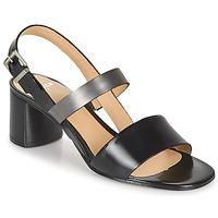 Schoenen Dames Sandalen / Open schoenen Perlato 11805-JAMAICA-NOIR Zwart