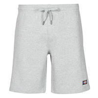 Textiel Heren Korte broeken / Bermuda's Dickies CHAMPLIN Grijs / Gevlekt