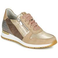 Schoenen Dames Lage sneakers Dorking VIOLA Goud