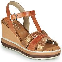Schoenen Dames Sandalen / Open schoenen Dorking TOTEM Bruin