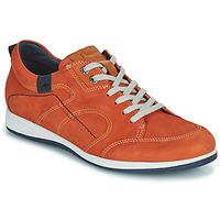 Schoenen Heren Lage sneakers Fluchos 9734-CRETA-CUERO Bruin