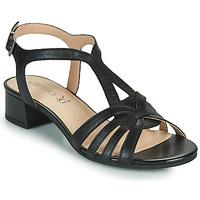 Schoenen Dames Sandalen / Open schoenen Caprice 28201-022 Zwart