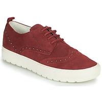 Schoenen Dames Lage sneakers Geox D BREEDA Bordeau