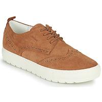 Schoenen Dames Lage sneakers Geox D BREEDA Bruin