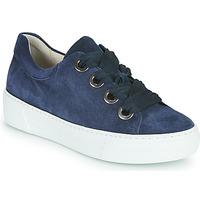 Schoenen Dames Lage sneakers Gabor 6646446 Marine
