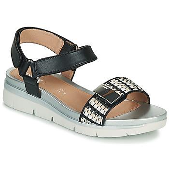 Schoenen Dames Sandalen / Open schoenen Stonefly ELODY 11 Zwart