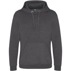 Textiel Heren Sweaters / Sweatshirts Awdis JH101 Houtskool