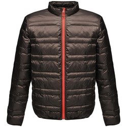Textiel Heren Dons gevoerde jassen Regatta RG119 Zwart/Rood