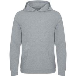 Textiel Heren Sweaters / Sweatshirts Ecologie EA040 Heide