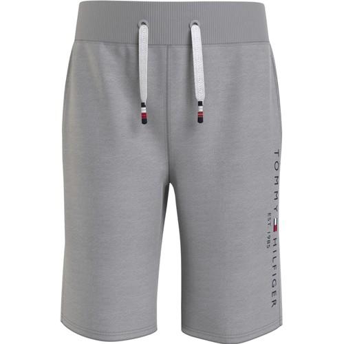Textiel Jongens Korte broeken / Bermuda's Tommy Hilfiger BAHAMA Grijs